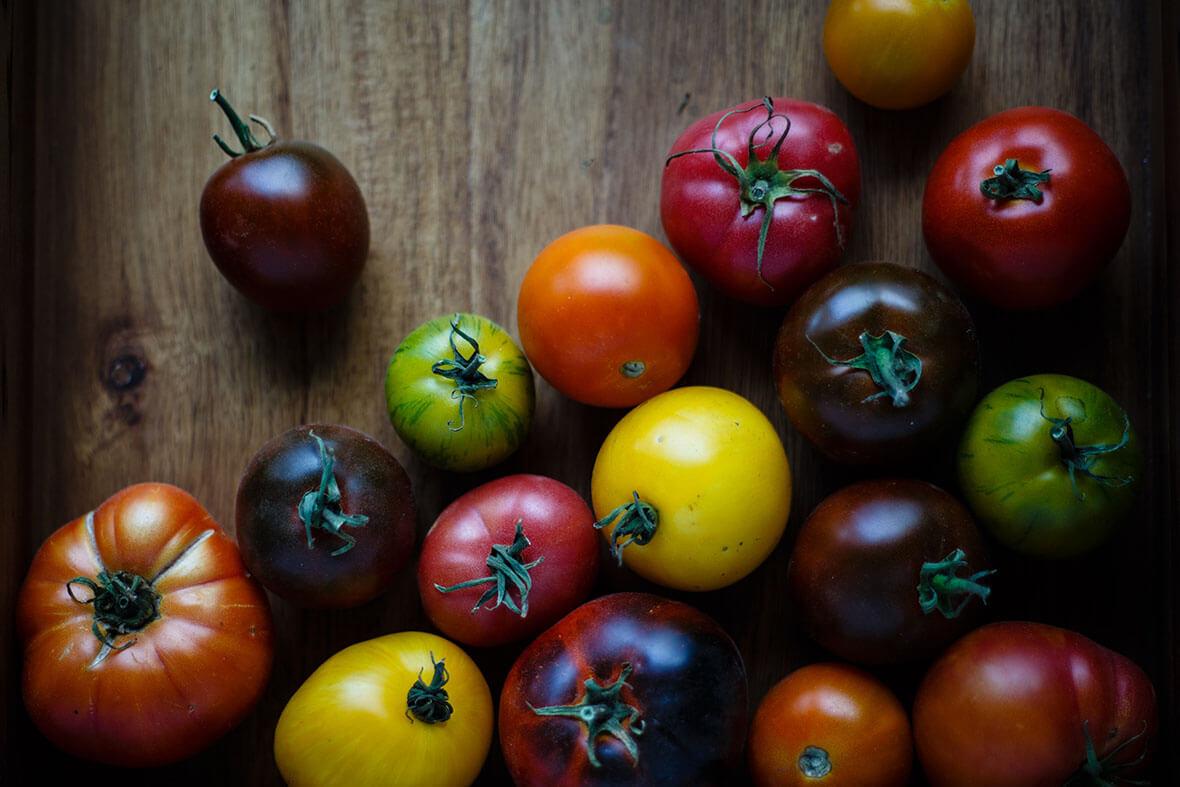 tomate variete ancienne